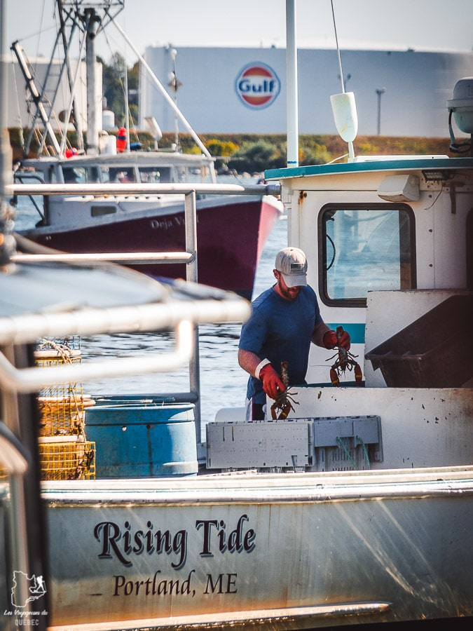 Pêcheur de homard au Working Waterfront, incontournable à visiter à Portland dans notre article Visiter Portland : Quoi faire à Portland dans le Maine pour un weekend gourmand #Portland #Maine #USA #voyage #foodtour