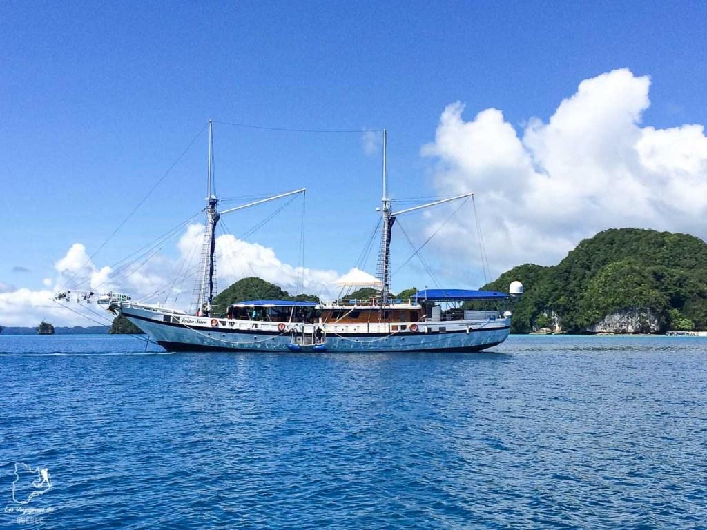 Plongée sous-marine en formule liveaboard dans l'archipel de Palaos dans notre article Plongée sous-marine : 20 destinations de plongée à travers le monde #plongee #plongeesousmarine #voyage #destination