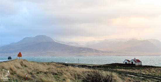 Visiter l'Islande : quoi faire et voir en 4 jours seulement #islande #europe #voyage