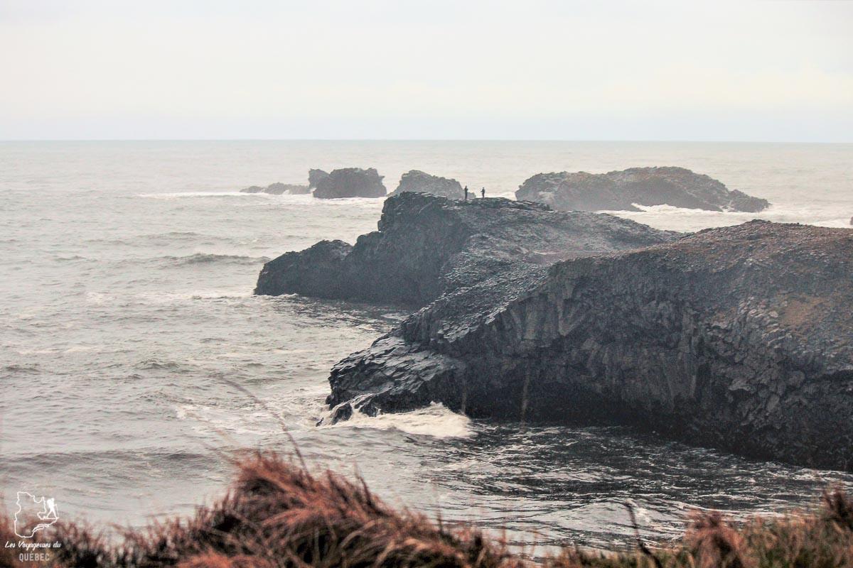 Voir la péninsule Dyrholaey, au sud complètement de l'Islande dans notre article Visiter l'Islande : quoi faire et voir en 4 jours seulement #islande #europe #voyage