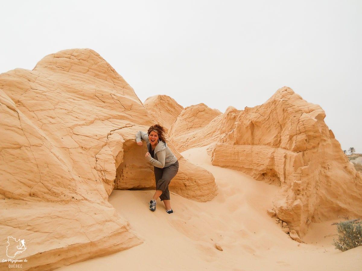 Les dunes du désert du Sahara dans notre article Déserts du monde : L'expérience mystique du Sahara, Thar et Wadi Rum #deserts #desert #sahara #thar #wadirum #voyage