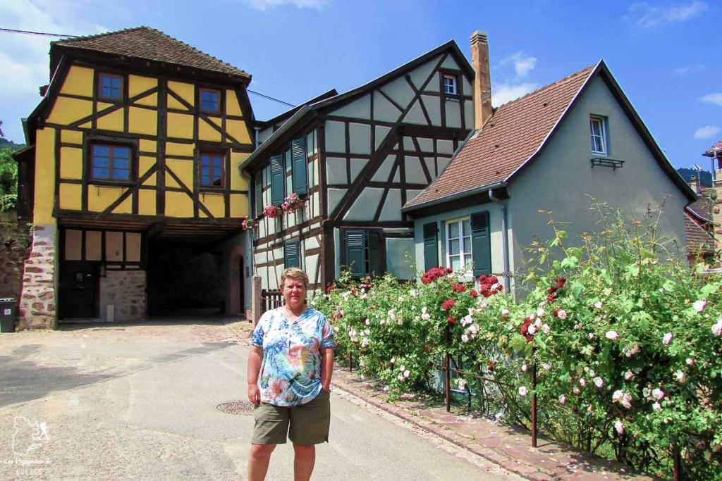 Visiter l'Alsace en France dans notre article Visiter Strasbourg en Alsace et ses environs en 6 itinéraires d'un jour #strasbourg #alsace #france #voyage