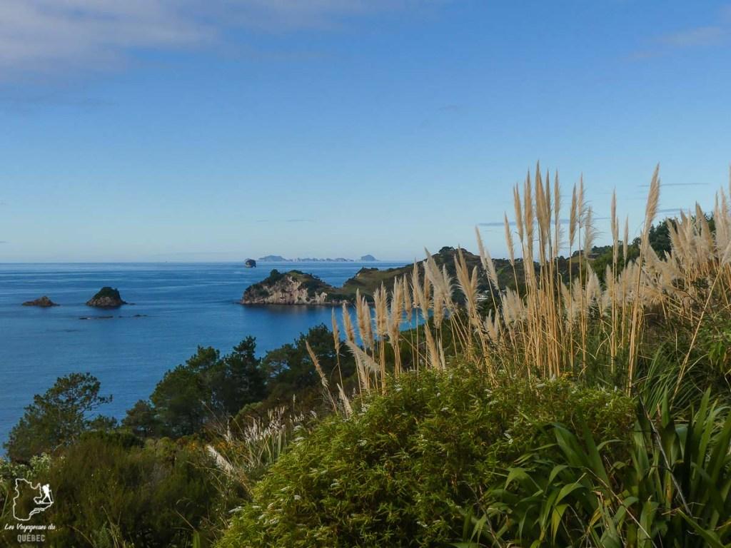 Cathedral cove sur la péninsule de Coromandel en Nouzelle-Zélande dans notre article Trek en Nouvelle-Zélande : 5 randonnées à faire sur l'île du nord en Nouvelle-Zélande #trek #randonnee #iledunord #nouvellezelande #oceanie #voyage