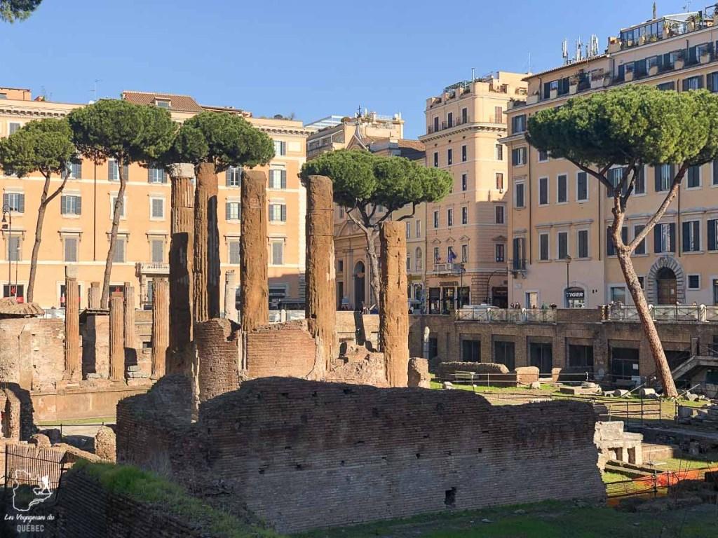 Torre Argentina Cat Sanctuary à Rome dans notre article Visiter Rome en 4 jours : Que faire à Rome, la capitale de l'Italie #rome #italie #europe #voyage