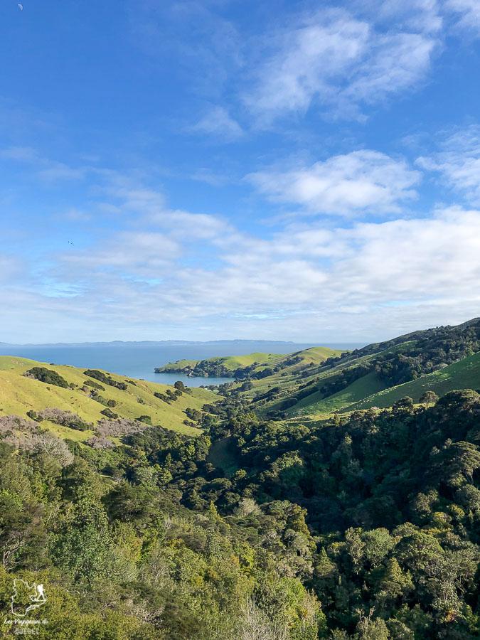 Trek sur la péninsule de Coromandel en Nouzelle-Zélande dans notre article Trek en Nouvelle-Zélande : 5 randonnées à faire sur l'île du nord en Nouvelle-Zélande #trek #randonnee #iledunord #nouvellezelande #oceanie #voyage