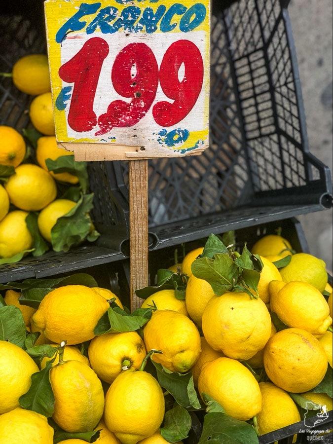 Citrons et limoncello à Naples en Italie dans notre article Que faire à Naples en Italie et voir : Visiter Naples, Pompéi et la Côte Amalfitaine #naples #italie #europe #voyage #pompei #coteamalfitaine