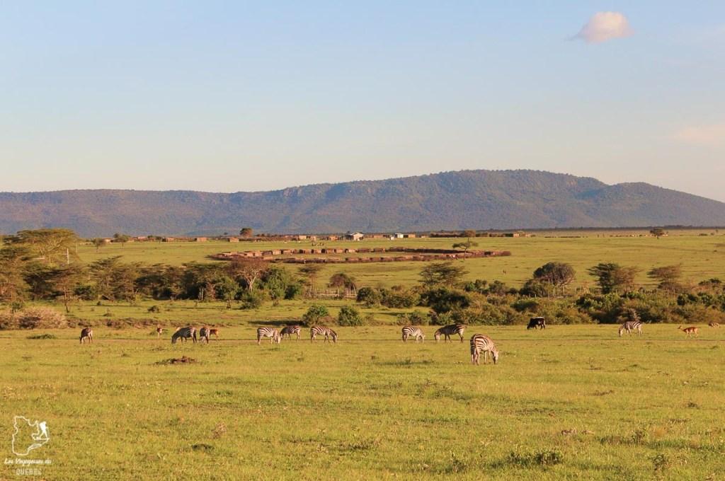 Camp Masaï Mara au Kenya dans notre article Safari au Kenya et en Tanzanie : comment l'organiser et s'y préparer #kenya #tanzanie #safari #afrique #voyage