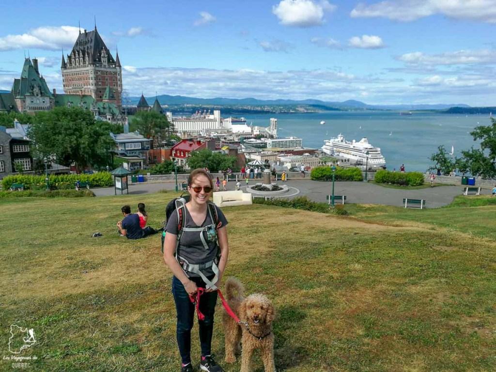 La ville de Québec, un endroit où aller avec son chien au Québec dans notre article Voyager avec son chien au Québec : Que faire et où aller #quebec #chien #voyager