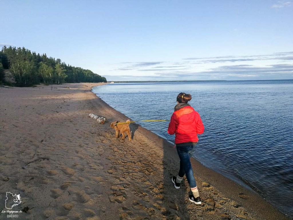 Balade au Lac Saint-Jean avec mon chien dans notre article Voyager avec son chien au Québec : Que faire et où aller #quebec #chien #voyager