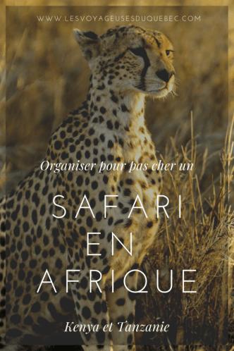 Safari au Kenya et en Tanzanie : Organiser un safari en Afrique
