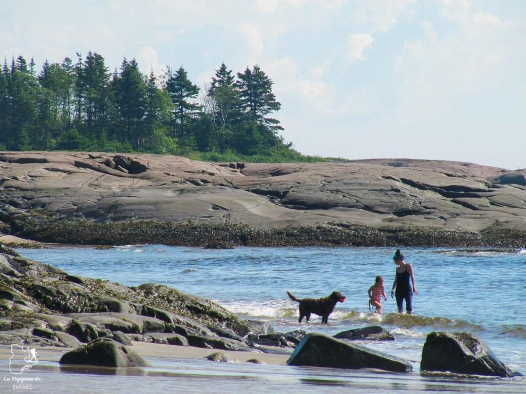 Visiter la Côte-Nord au Québec dans notre article Visiter la Côte-Nord au Québec : mes coups de cœur tout en nature #cotenord #quebec #canada #nature