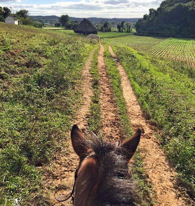 Randonnée à cheval à Viñales à Cuba dans notre article Voyager en palette d'émotions : lorsque l'aventure devient introspection #emotions #voyage #voyager #introspection