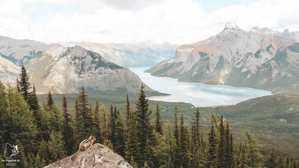 Road trip en solo et en couchsurfing au Canada dans notre article Couchsurfing au Canada : Mon expérience en Couchsurfing à travers le Canada #couchsurfing #canada #voyage #roadtrip