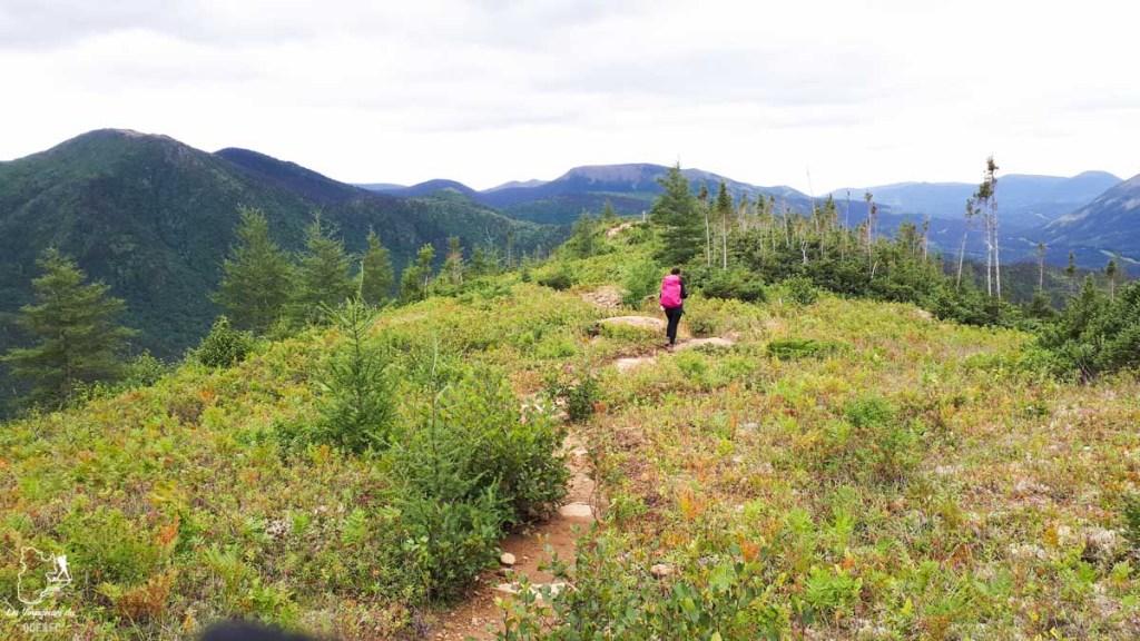 Randonnée au Mont Olivine dans notre article 4 randonnées en Gaspésie incontournables du Parc de la Gaspésie et des Chic-Chocs #randonnee #Gaspesie #chicchocs #sepaq #quebec