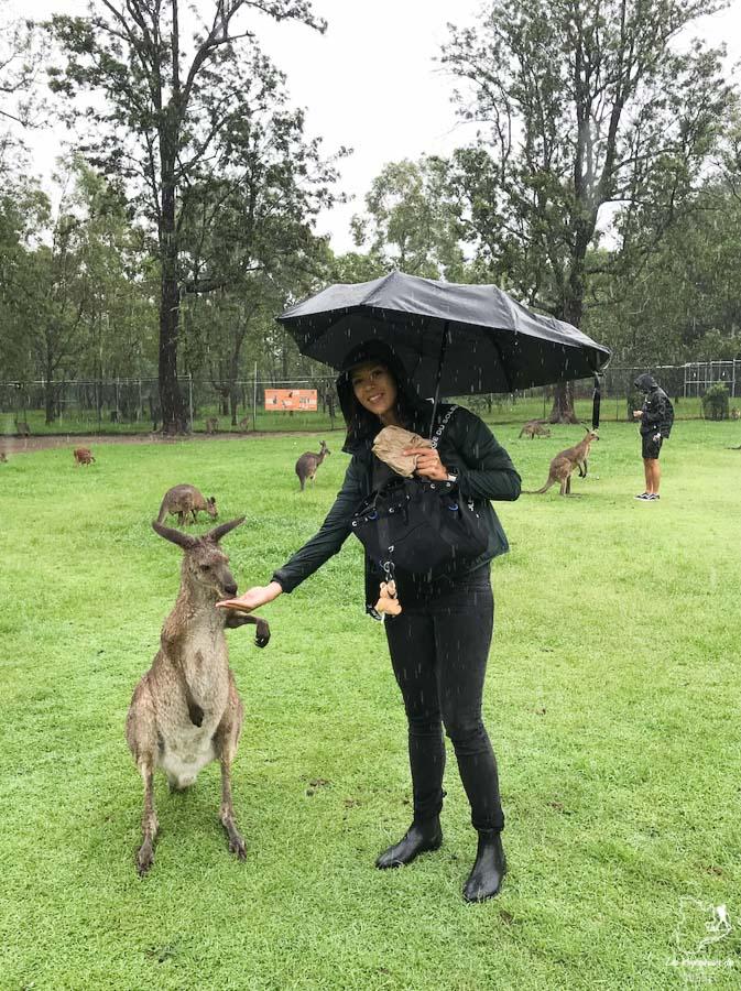 Faire des activités sous la pluie en voyage dans notre article Que faire quand il pleut en voyage: 11 idées de que faire par temps de pluie #pluie #voyage #astuces