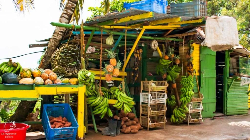 Kiosque du marchand de fruits à Las Terrenas dans notre article Voyager en République Dominicaine autrement : Las Terrenas, destination coup de coeur #republiquedominicaine #caraibes #antilles #amerique #voyage #voyagedanslesud #lasterrenas
