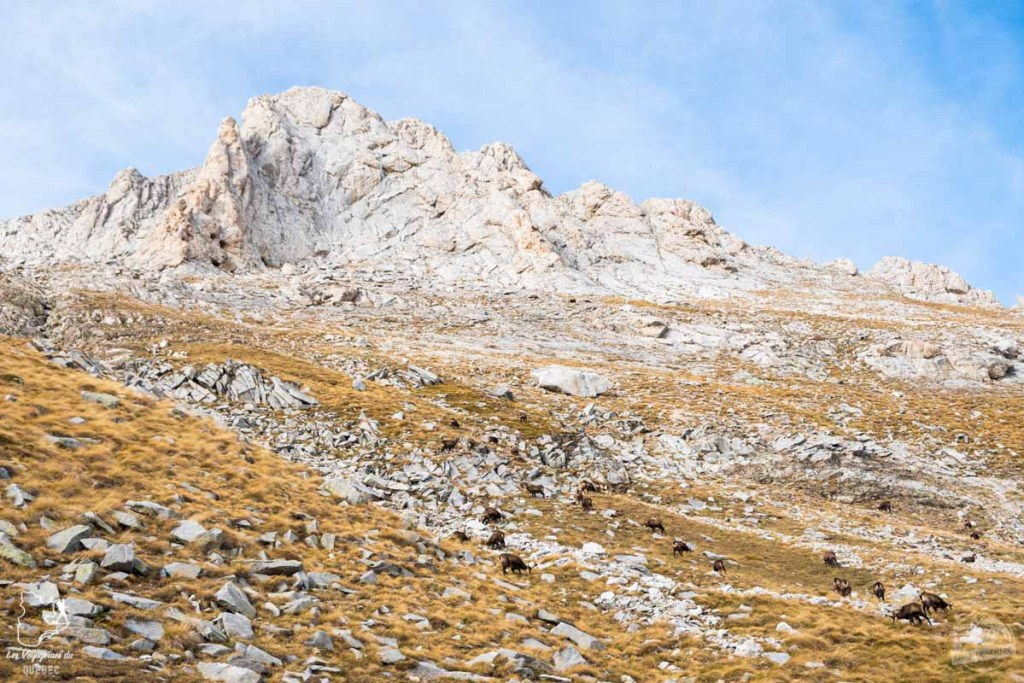 Randonnée sur le Mont Vihren en Bulgarie dans notre article Visiter la Bulgarie : itinéraire et conseils pour 1 mois de voyage en Bulgarie #bulgarie #europe #europedelest #voyage