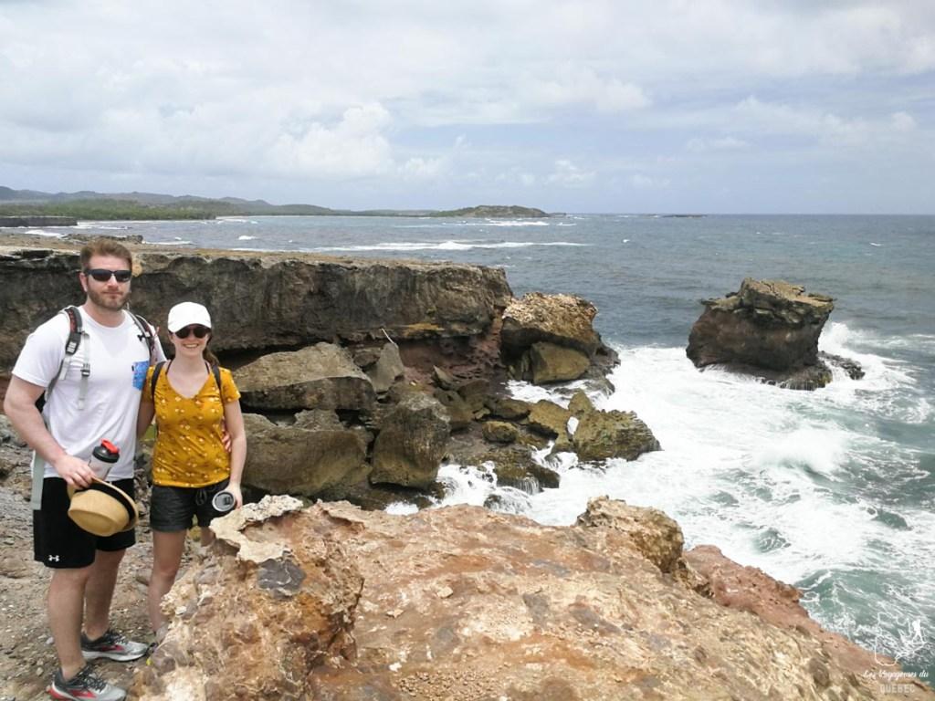 Savane de pétrifications en Martinique dans notre article Que faire en Martinique : 10 incontournables à visiter sur l'île aux fleurs #martinique #france #caraibes #antilles #amerique #voyage #ile
