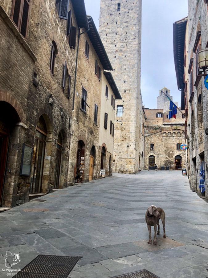 La ville médiévale de San Gimignano en Italie inscrite à l'Unesco dans notre article Mon weekend à visiter San Gimignano en Italie : Magnifique ville fortifiée de la Toscane #sangimignano #toscane #italie #unesco #voyage
