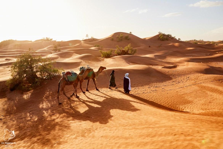 Visiter le désert autour de Dubaï dans notre article Visiter Dubaï avec un petit budget : Que faire à Dubaï et voir pour un séjour pas cher #dubai #emiratsarabesunis #asie #voyage