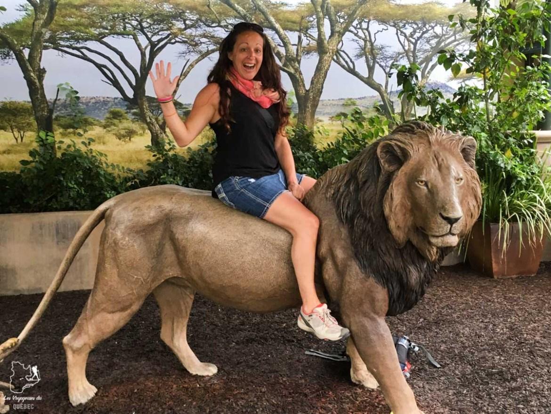 Zoo de San Diego dans notre article Quand le voyage t'aide à garder la tête hors de l'eau #reflexion #voyage #depression