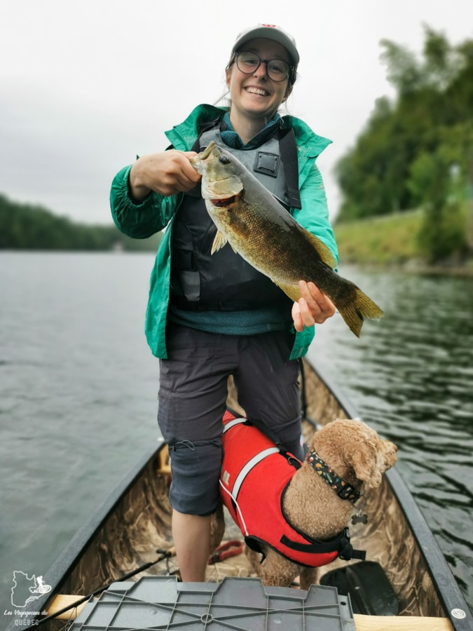Pêche à l'achigan sur le Lac Massawippi dans notre article Quoi faire en Estrie avec son chien : mon itinéraire pour visiter l'Estrie avec Pitou #estrie #cantonsdelest #quebec #bonjourquebec #canada #chien #roadtrip