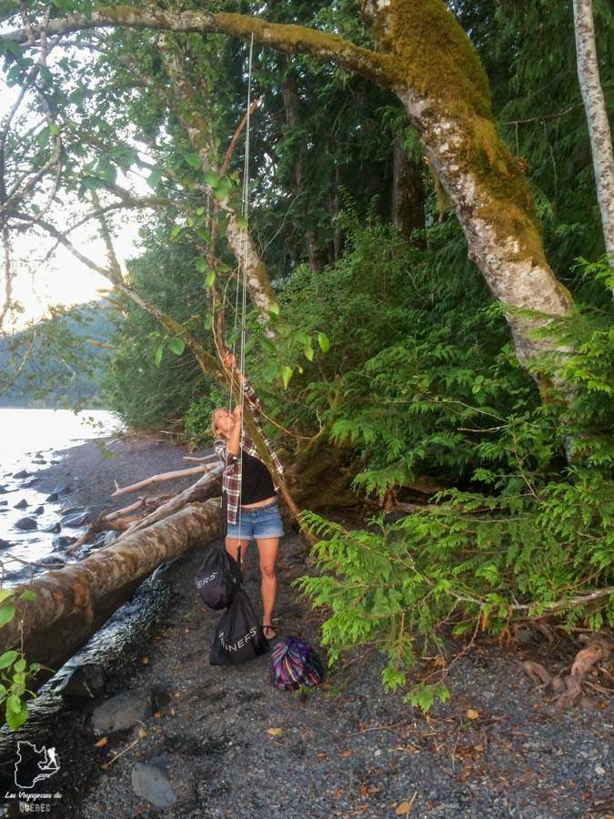Nourriture dans les arbres lors du camping sauvage dans notre article Voyage en auto-stop : De l'Alaska à la Californie sur le pouce, une aventure humaine #autostop #pouce #voyage #usa #canada