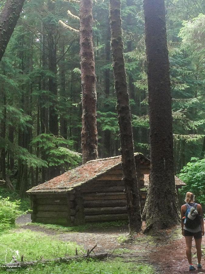 Randonnée en Oregon dans notre article Voyage en auto-stop : De l'Alaska à la Californie sur le pouce, une aventure humaine #autostop #pouce #voyage #usa #canada