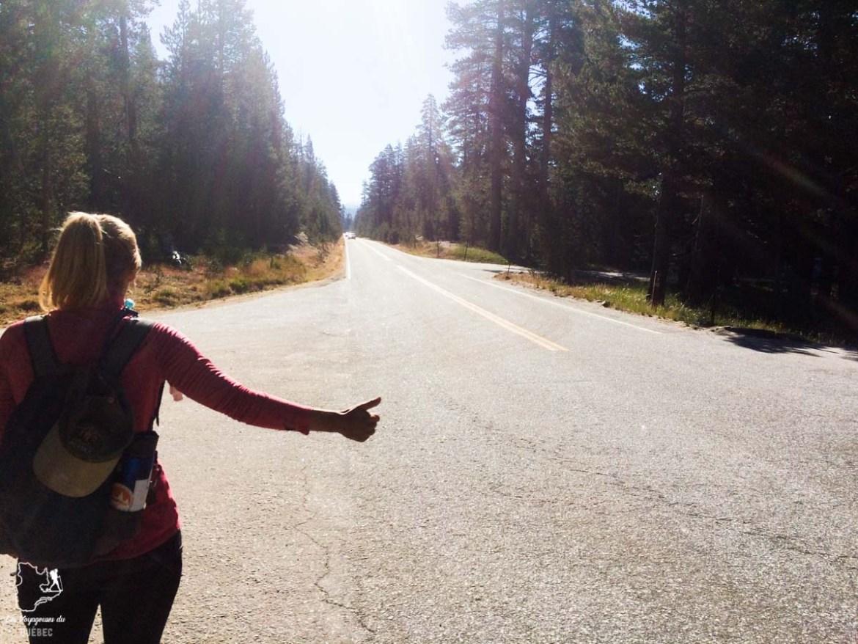 Voyage en auto-stop de l'Alaska à la Californie dans notre article Voyage en auto-stop : De l'Alaska à la Californie sur le pouce, une aventure humaine #autostop #pouce #voyage #usa #canada