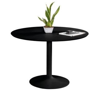Table de salle à manger - 99,99 €