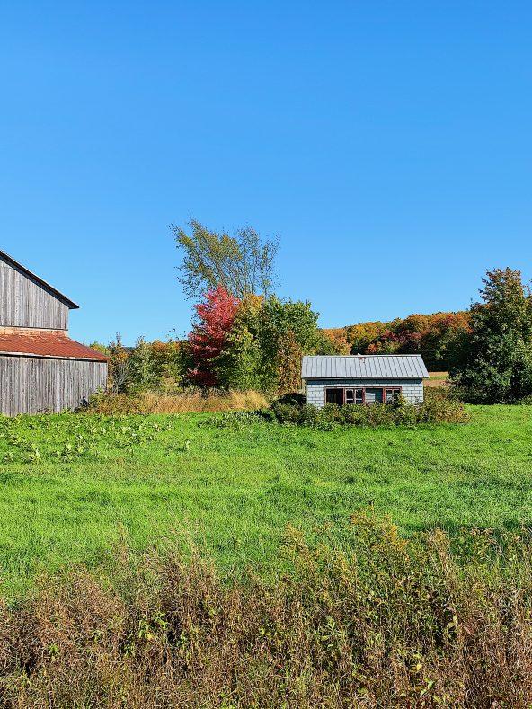 10 raisons d'aimer l'automne!