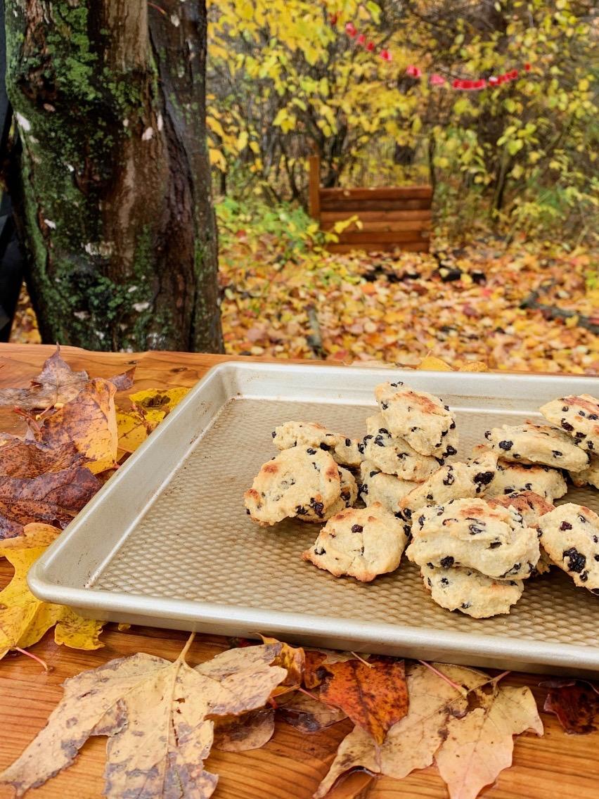 Biscuits au quinoa et raisins secs