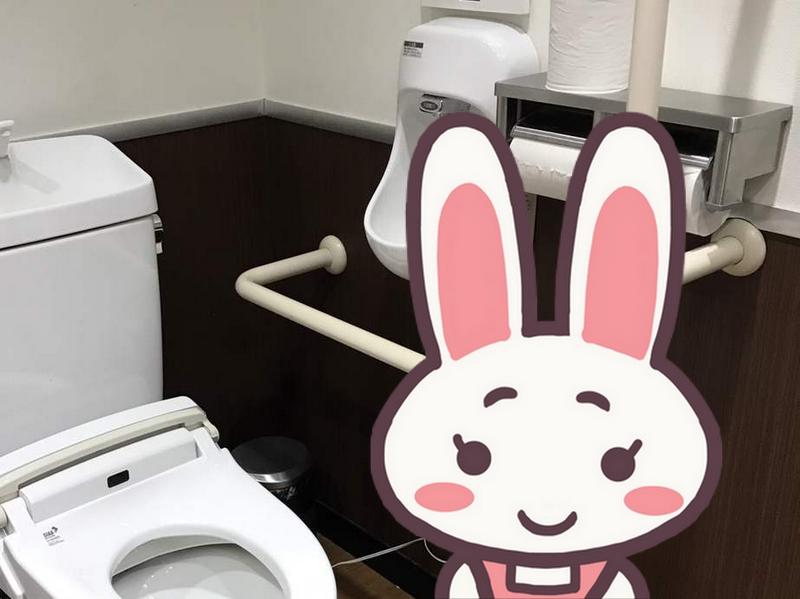 これのどこが「オストメイトトイレ?」と思った件(汚物流しがない…)