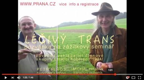 LecivyTransxxx
