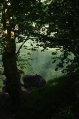 Itxassou, Pays basque, 12 juillet 2012, 17:44