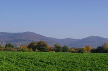 Heidelberg, 21 octobre 2012 à 14:33