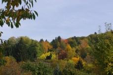 Heidelberg, 20 octobre 2012, 11:24