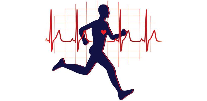 Découverte Musculation et Cardio Training