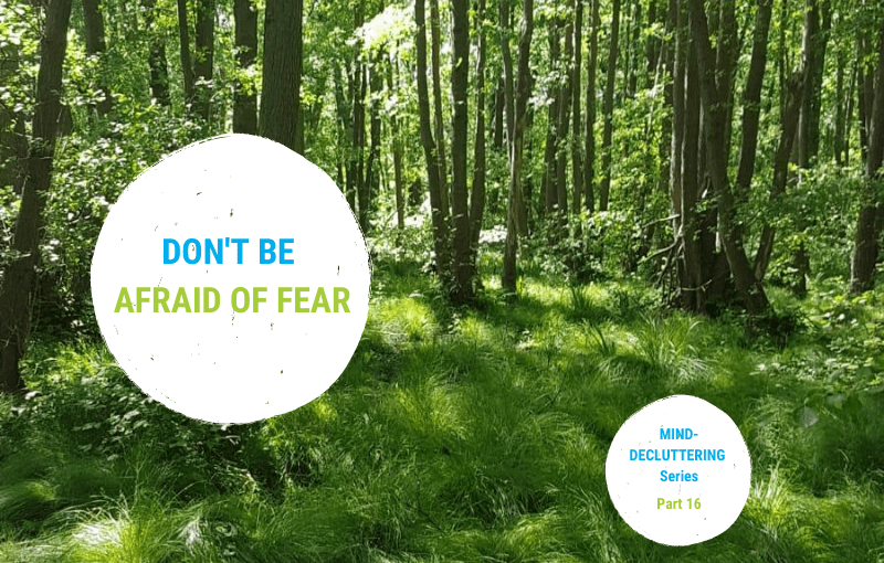 The Mind-Decluttering Series - Part 16 - Don t be afraid of fear