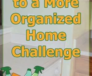 4 Weeks to a More Organized Home Challenge: Week 1 Update