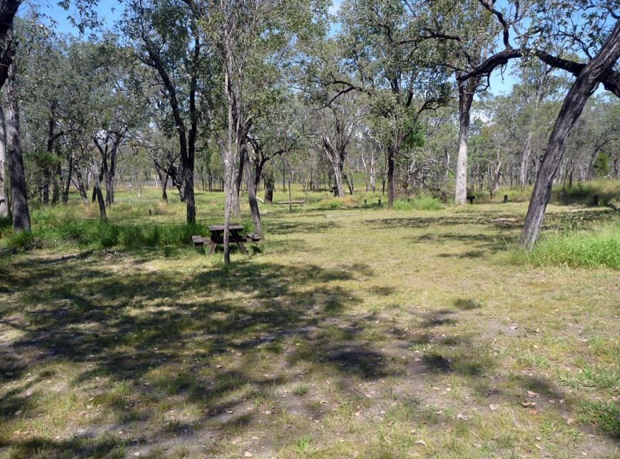 Nogoa-Creek-Campground-3