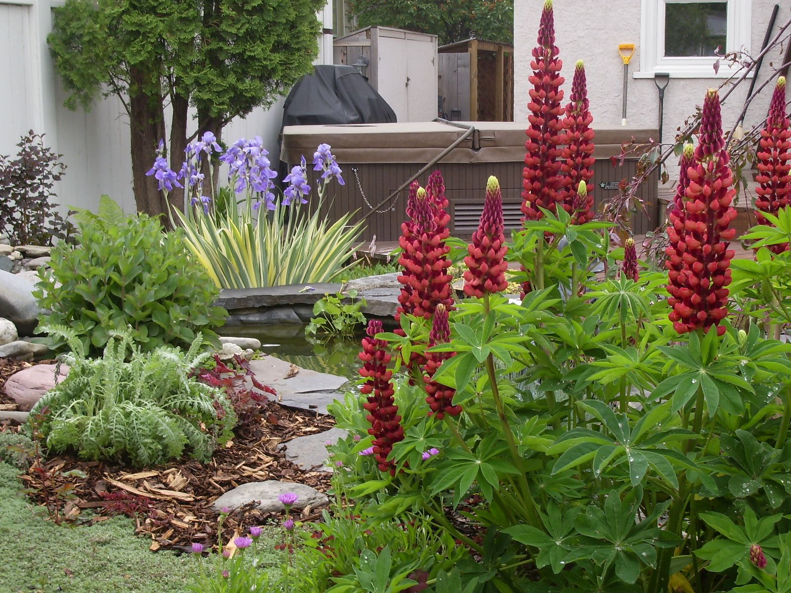 garden tours lethbridge and district horticultural society
