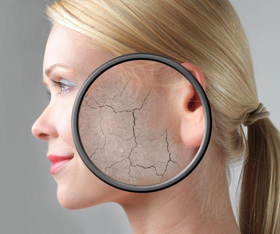 臉部保濕保護角質層