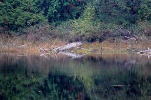 Quiet lake as we arrive