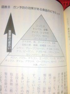 がん予防食品ピラミッド