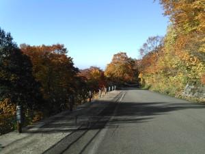 秋の宮→川原毛地獄9