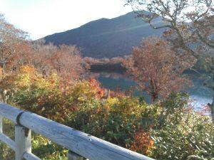 須川湖キャンプ場 紅葉