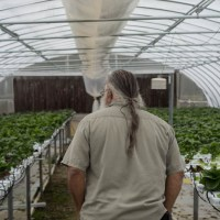 Q&A Tuesday: Tony Bono of Flora Ridge Farm