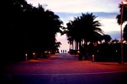 Miami-LeTONE 3