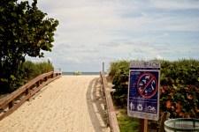 Miami-LeTONE 44